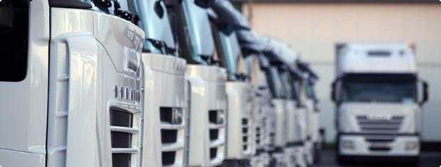 Newlea Fuel Systems